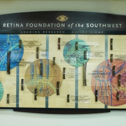 Retina 002A